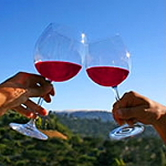 Red Wine Sisters